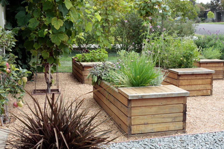 Planter Box Landscaping Escondido