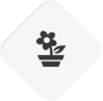 Landscaping Escondido flower-thumb