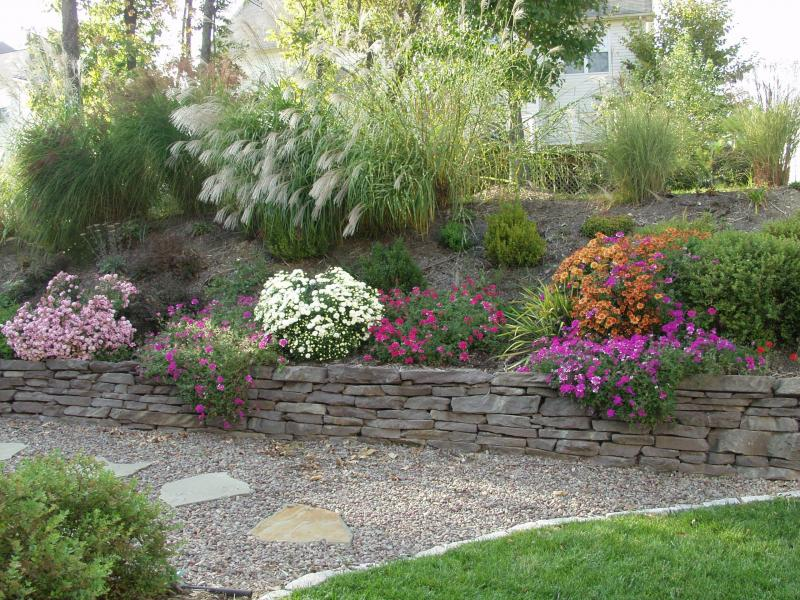 Flowers trees and shrubs - Landscaping Escondido