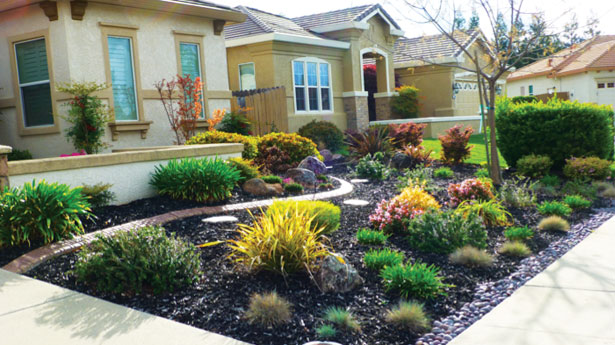 Groundcover Installation - Landscaping Escondido | AJ Criss Industries